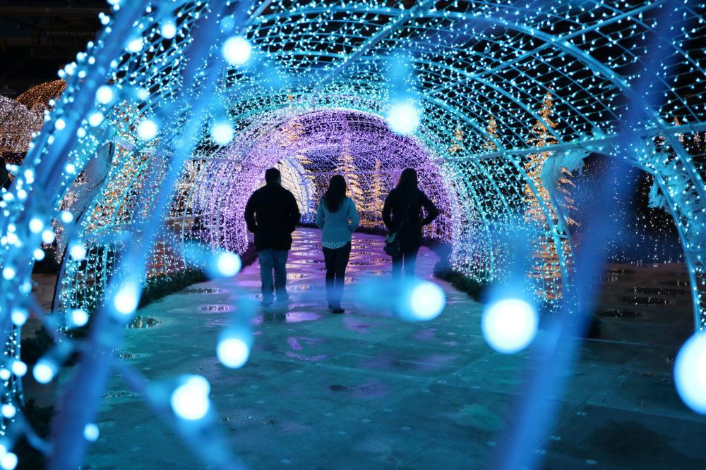 Christmas light maze